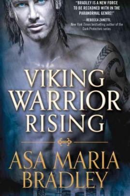 vikingwarriorrising